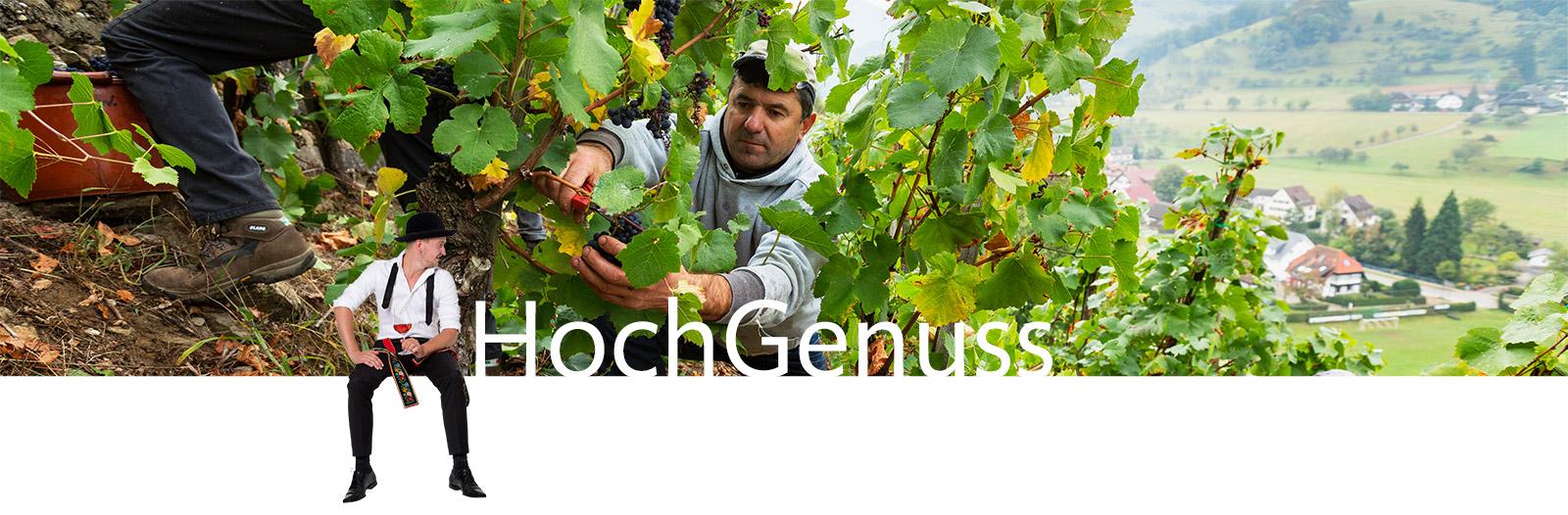 HochGenuss Glottertaeler Winzer Visual